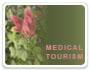 Medical Tourism Traveler